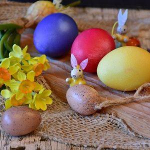 яйца, кролик